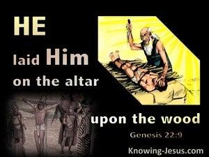 Genesis 22:9
