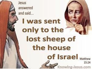 Matthew 15:24