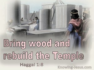 Haggai 1:8