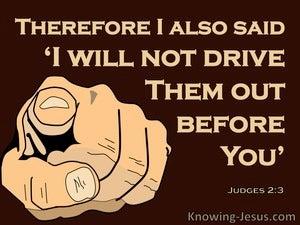 Judges 2:3