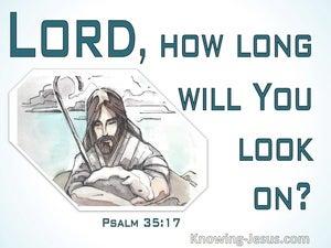 Psalm 35:17