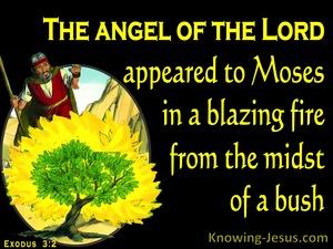 Exodus 3:2