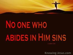 1 John 3:6