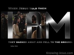 John 18:6