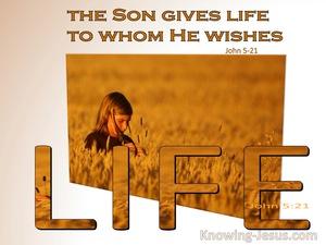 John 5:21
