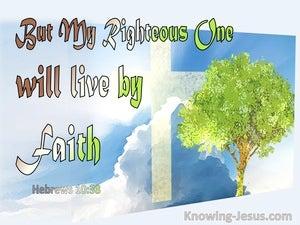 Hebrews 10:38