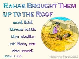Joshua 2:6