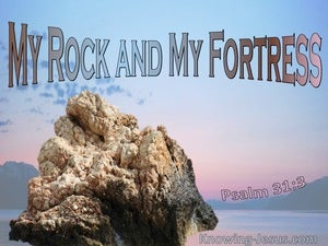 Psalm 31:3