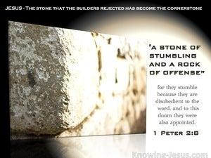 1 Peter 2:8