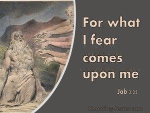 Job 3:25