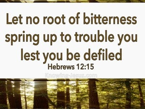 Hebrews 12:15