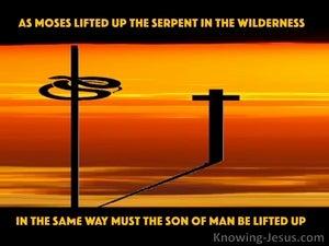 John 3:14
