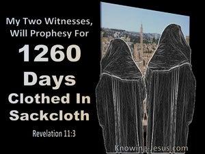 Revelation 11:3
