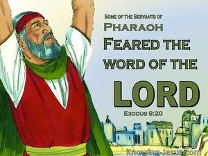 Exodus 9:20