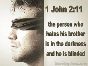 1 John 2:11