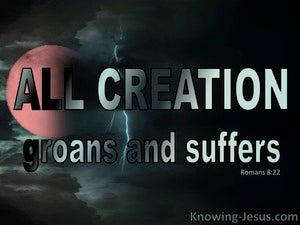 Romans 8:22