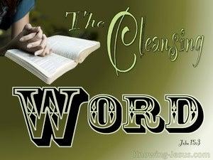 John 15:3