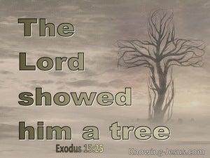Exodus 15:25
