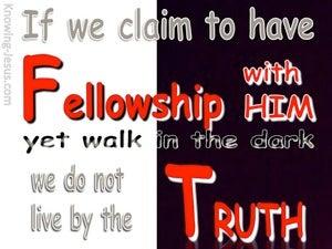 1 John 1:6