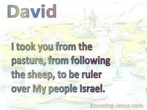 2 Samuel 7:8