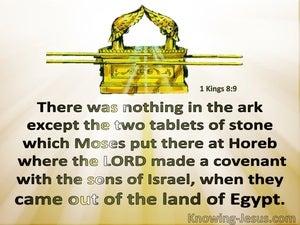 1 Kings 8:9