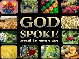 Genesis 1:11