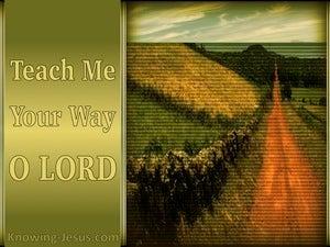 Psalm 27:11