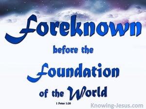1 Peter 1:20
