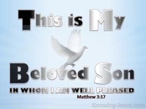 Matthew 3:17