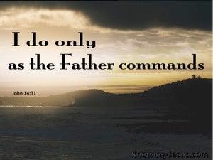 John 14:31