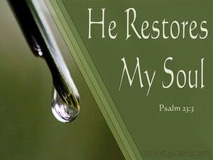 Psalm 23:3