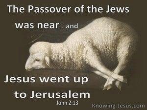 John 2:13