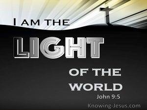 John 9:5