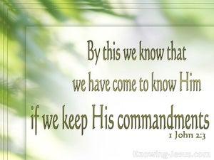 1 John 2:3
