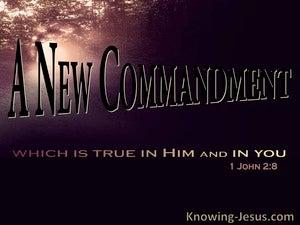 1 John 2:8