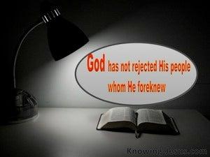 Romans 11:2