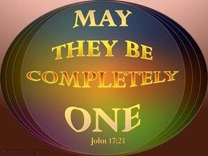John 17:23