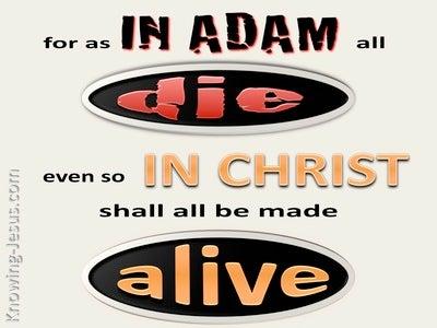 1 Corinthians 15:22