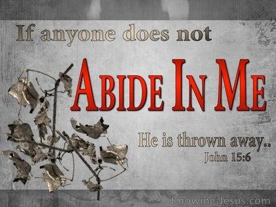 John 15:6