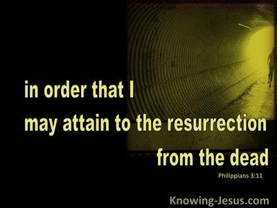 Philippians 3:11