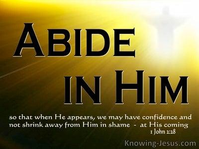 1 John 2:28