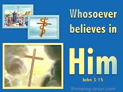 John 3:15