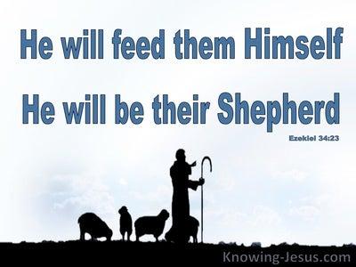 Ezekiel 34:23