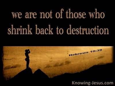 Hebrews 10:39