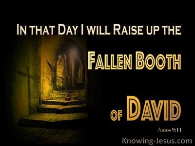 Amos 9:11