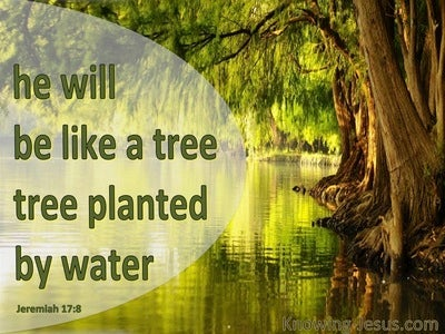 Jeremiah 17:8
