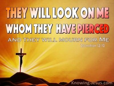 Zechariah 12:10