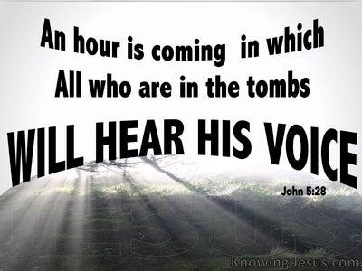 John 5:28