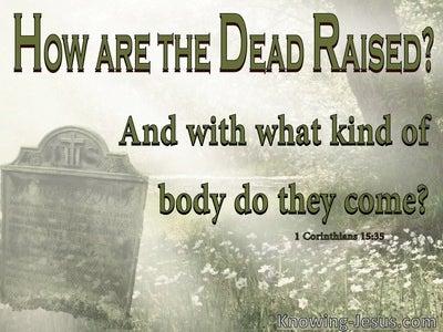 1 Corinthians 15:35