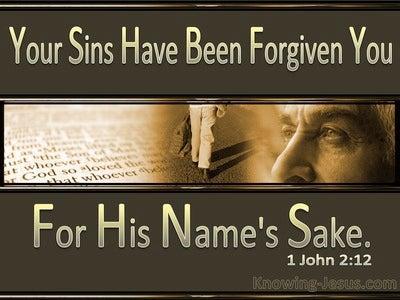 1 John 2:12